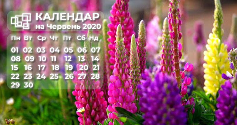 Календар бухгалтера в червні 2020 року!